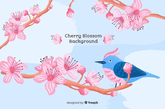 Vogel kersenbloesem achtergrond