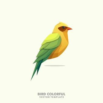 Vogel kleurrijke illustratie vector ontwerpsjabloon