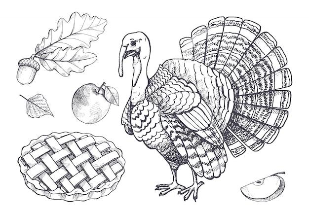 Vogel turkije en gebakken taart apple instellen pictogrammen vector