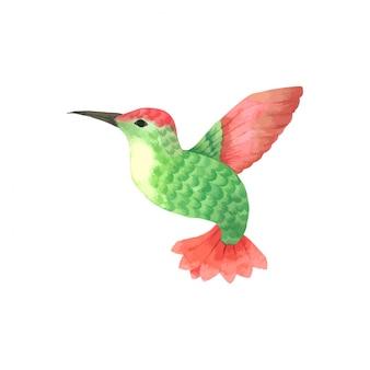 Vogel vliegende waterverf, groene en rode vogel hand getrokken geschilderd voor wenskaart