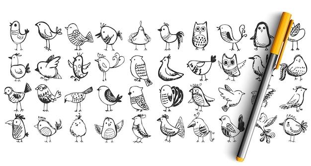 Vogels doodle set. collectie potlood pen inkt hand getrokken schetsen. vliegende dieren nachtegaal uil boom mus duif.