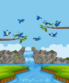 Vogels in de natuur landschap