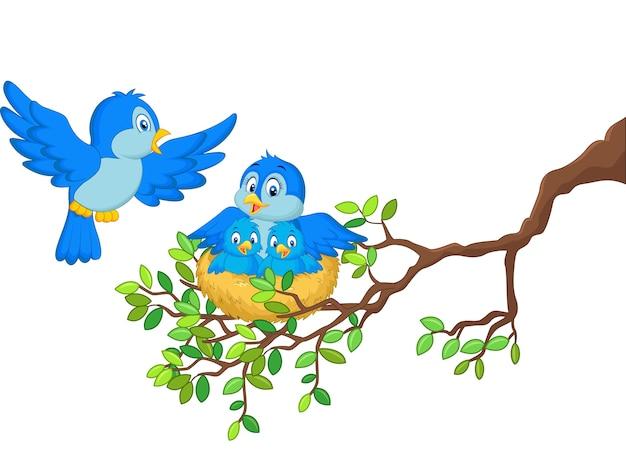 Vogels met haar twee baby's in het nest