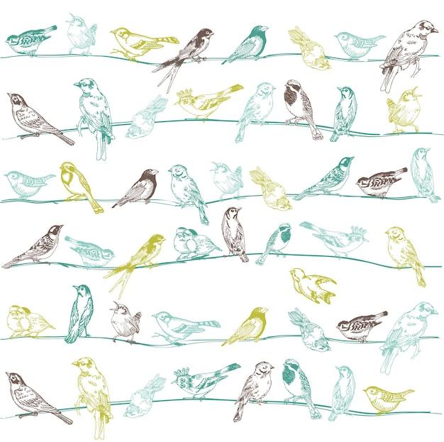 Vogels naadloos patroon