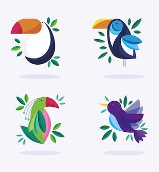Vogels ornithologie natuur fauna flora ontwerp