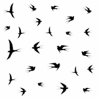 Vogels vliegen in wolken
