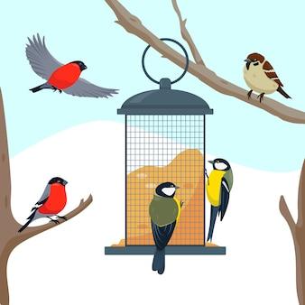 Vogelvoederhuisje op de boomtak en verschillende etende vogels