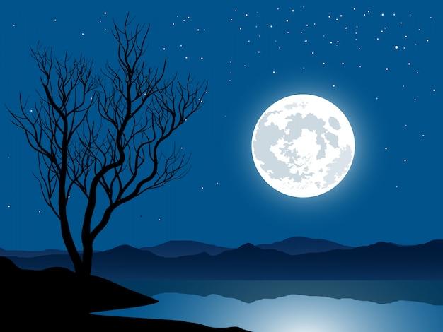 Volle maan en de kale boom bij meer