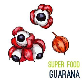 Volledige kleur super voedsel hand getrokken schets
