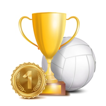 Volleybal award