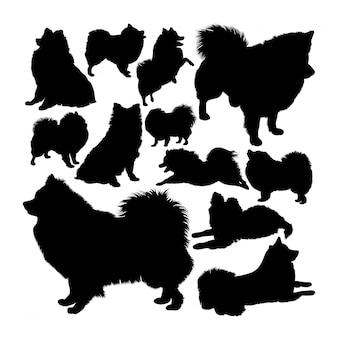 Volpino italiano hond dieren silhouetten
