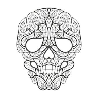 Volwassen kleuren. menselijke schedel.