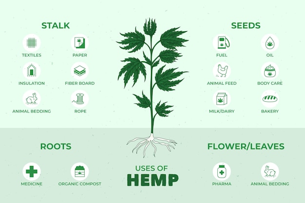 Voordelen van cannabis hennep
