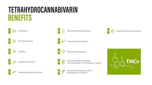 Voordelen van tetrahydrocannabivarin, witte poster met voordelen van tetrahydrocannabivarin met pictogrammen en chemische formule van tetrahydrocannabivarin