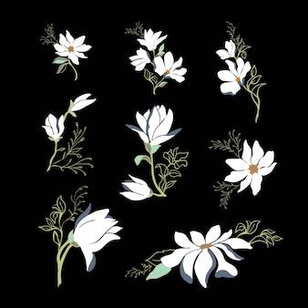 Voorjaarscollectie van bloeiende takken magnolia