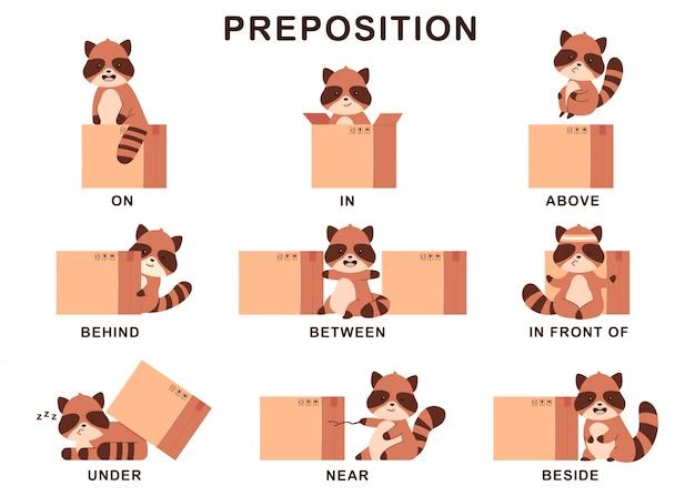 Voorzetsel van plaatsillustratie met leuke wasbeer en doos. cartoon set geïsoleerd.