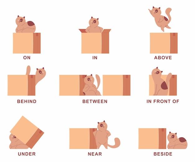 Voorzetsel van plaatsillustratie met schattige kat en doos. vector tekenfilm set geïsoleerd op een witte achtergrond.