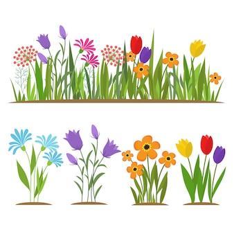 Vroege de lentebos en tuinbloemen die op witte reeks worden geïsoleerd
