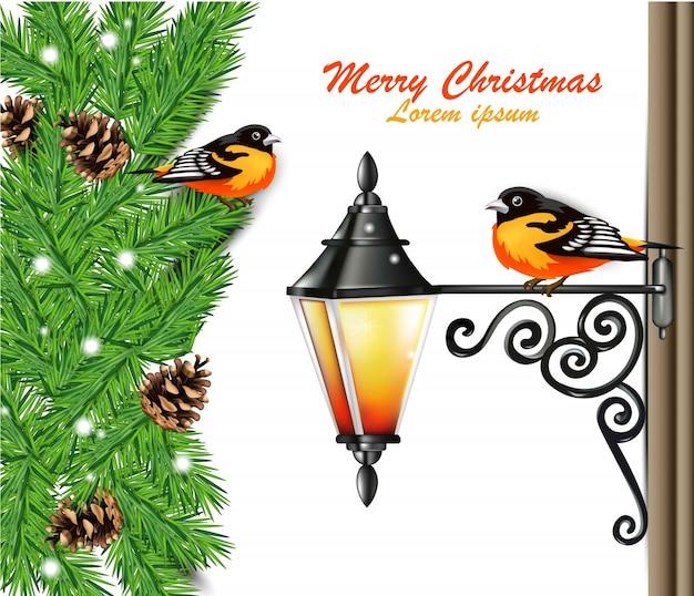 Vrolijke kerstkaart met leuke vogels op spartakken
