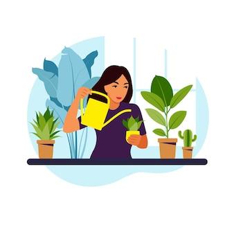 Vrouw kamerplanten thuis water geven. lifestyle, huistuin en kamerplanten concept. flat vector illustratie.