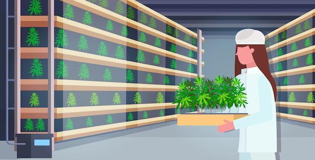 Vrouw met cannabisplanten industriële hennepplantage interieur legale cbd marihuana concept drugsgebruik agribusiness horizontaal portret