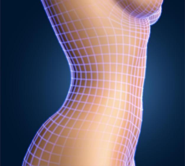 Vrouwelijk lichaam op kleur achtergrond. fotorealistische mesh