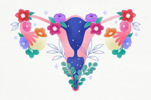 Vrouwelijk voortplantingssysteem met bloemen