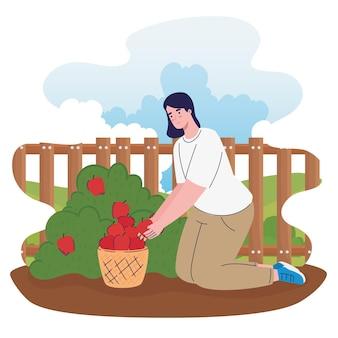 Vrouwelijke boer cultiveert tomaten in de boerderij-afbeelding Premium Vector