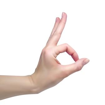 Vrouwelijke hand laat het goed zien. realistische afbeelding op een witte achtergrond.
