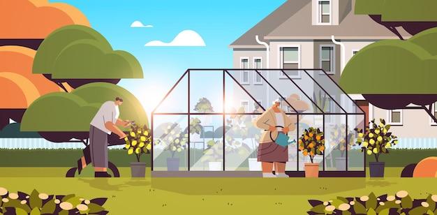 Vrouwelijke tuinmannen die voor potplanten zorgen in de achtertuinkas of de tuin van het huis horizontale vectorillustratie