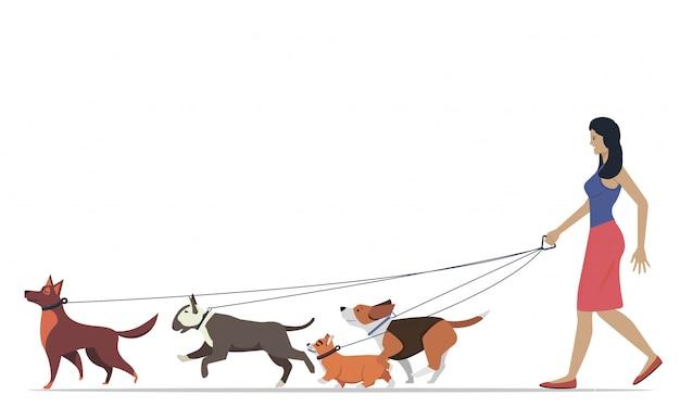 Vrouwen die de honden van verschillende rassen uitlaten. actieve mensen, vrije tijd. set van platte illustraties.