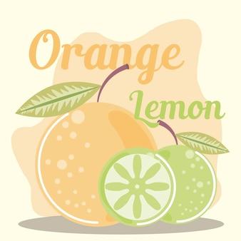 Vruchten verse citrus citroen en sinaasappel illustratie