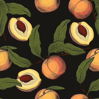 Vruchtenpatroon perzik naadloos patroon in gegraveerde vintage stijl hand getrokken vectorillustratie