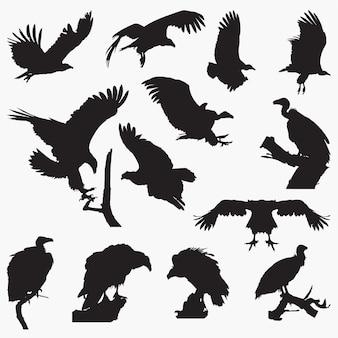 Vulture silhouetten