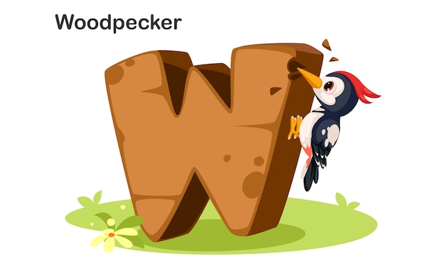 W voor woodpecker