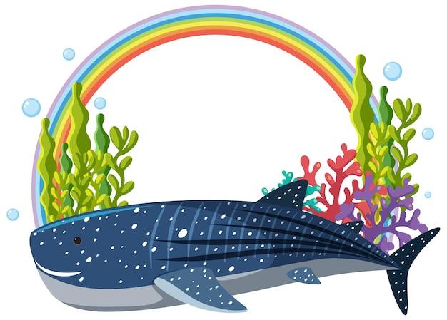 Walvishaai met regenboogbanner