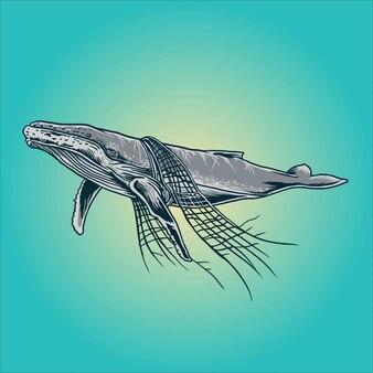 Walvissen en nettovervuiling