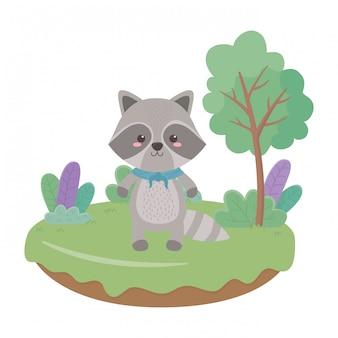 Wasbeer cartoon vector illustrator