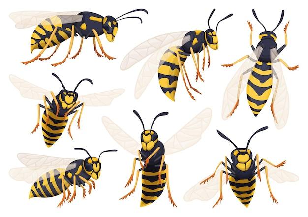 Wasp cartoon pictogrammen instellen.
