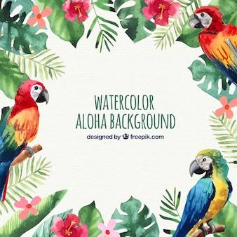 Water kleur papegaaien aloha achtergrond