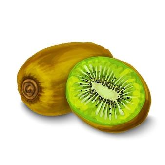 Watercolor kiwi