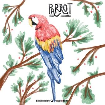 Watercolor papegaai met takken