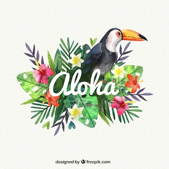 Watercolor pelikaan aloha achtergrond