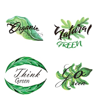 Watercolour green leaves logo collection