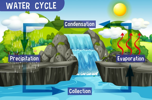 Watercyclusproces op aarde - wetenschappelijk