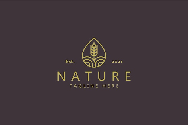 Waterdruppel vorm landbouw tarwe logo concept