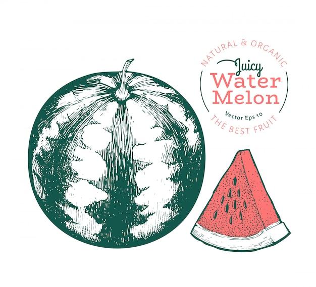 Watermeloen en een stukje watermeloen. hand getrokken vector exotische fruitillustratie. gegraveerde stijlfruit. vintage botanische illustratie.