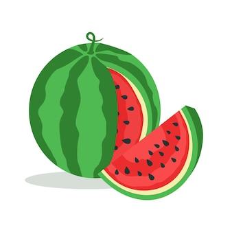 Watermeloen en sappige watermeloen segment geïsoleerd op een witte achtergrond. vector illustratie