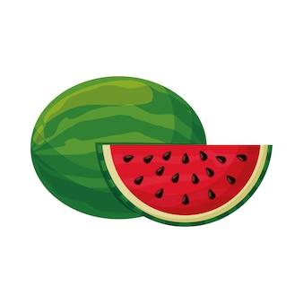 Watermeloen fruit vector