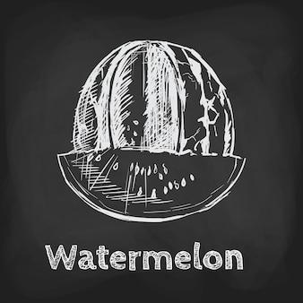 Watermeloen schets illustratie hand getrokken ontwerp gebruikselement